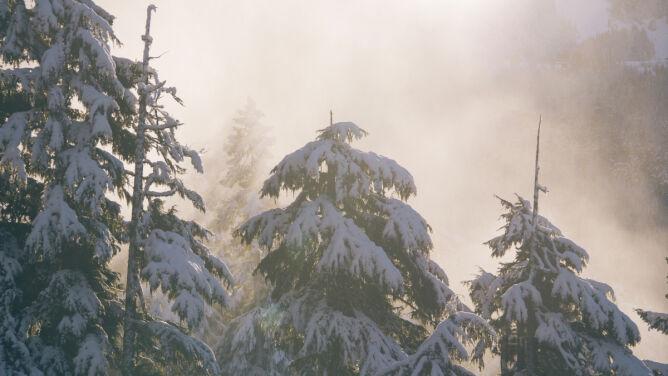 Prognoza pogody na dziś: chłodno w całym kraju. Spadnie śnieg, śnieg z deszczem lub deszcz