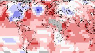 Ten rok obfituje w rekordy termiczne. Listopad kolejnym najcieplejszym miesiącem