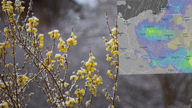 Pogoda na 5 dni: miejscami tylko 2 stopnie. Powrócą zimowe opady