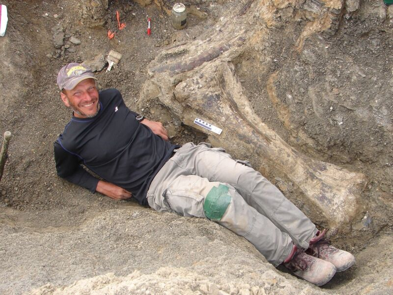 Kość udowa Dreadnoughtus Schrani